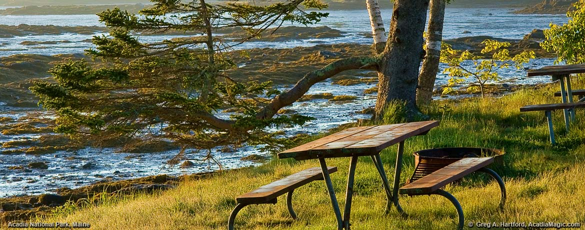 Acadia National Park Picnic Area