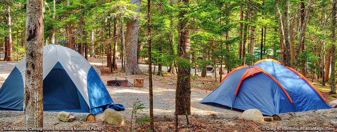 Blackwoods Campground - Acadia National Park Maine