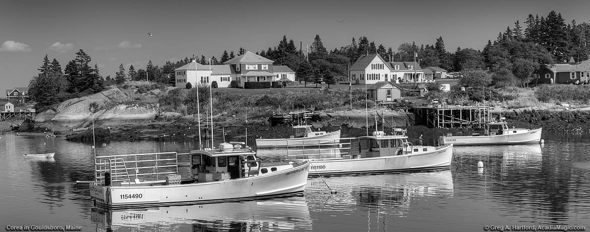 Black and White harbor scene showing Corea, Maine lobster boats