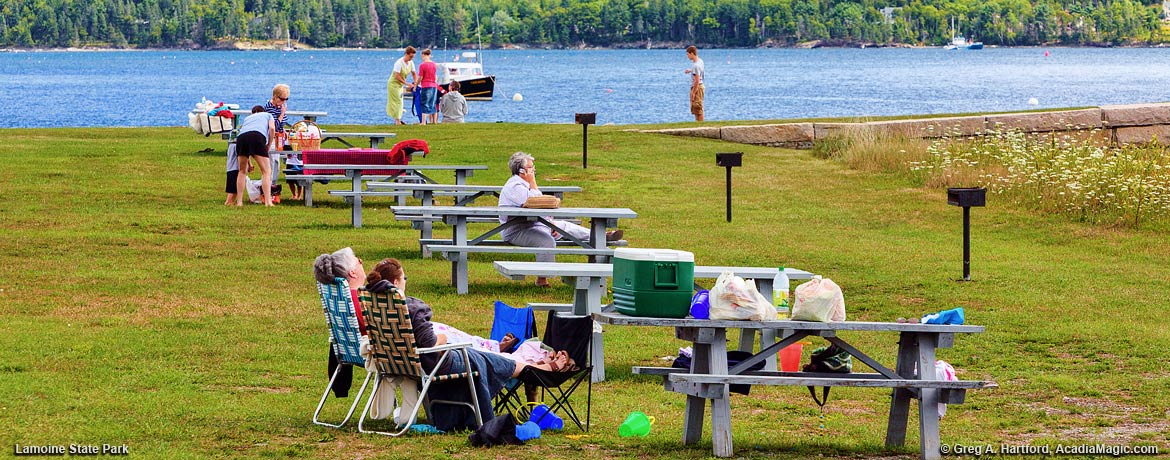 Picnic tables at Lamoine State Park