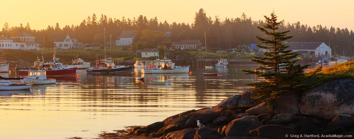 Lobster boats in Corea, Maine