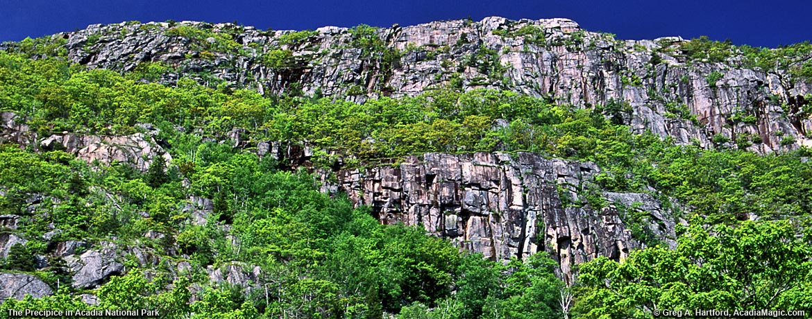 The Precipice in Acadia National Park, Bar Harbor, Maine