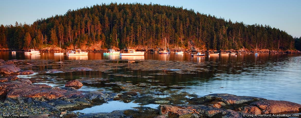Lobster boats and yachts in sunset glow