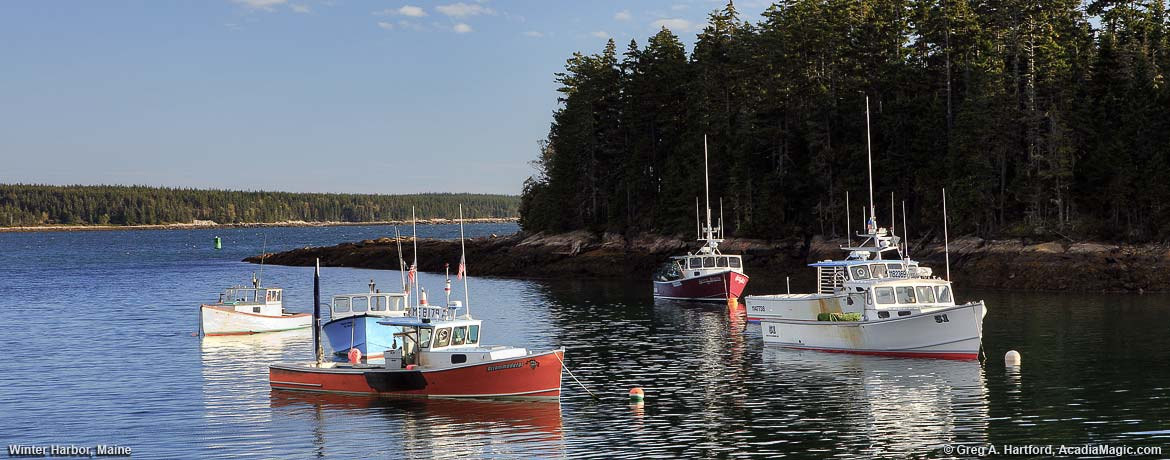Lobster Boats in the harbor