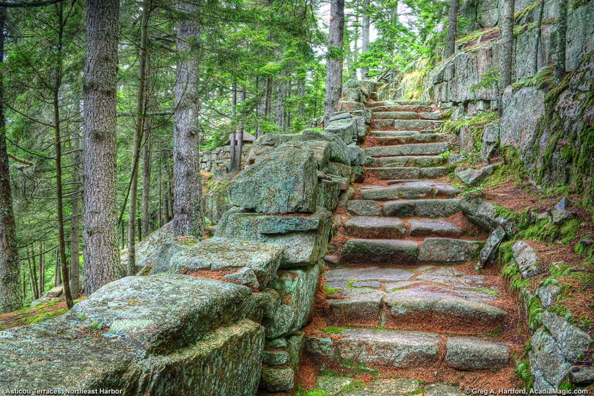 Granite steps leading upward at Asticou Terraces