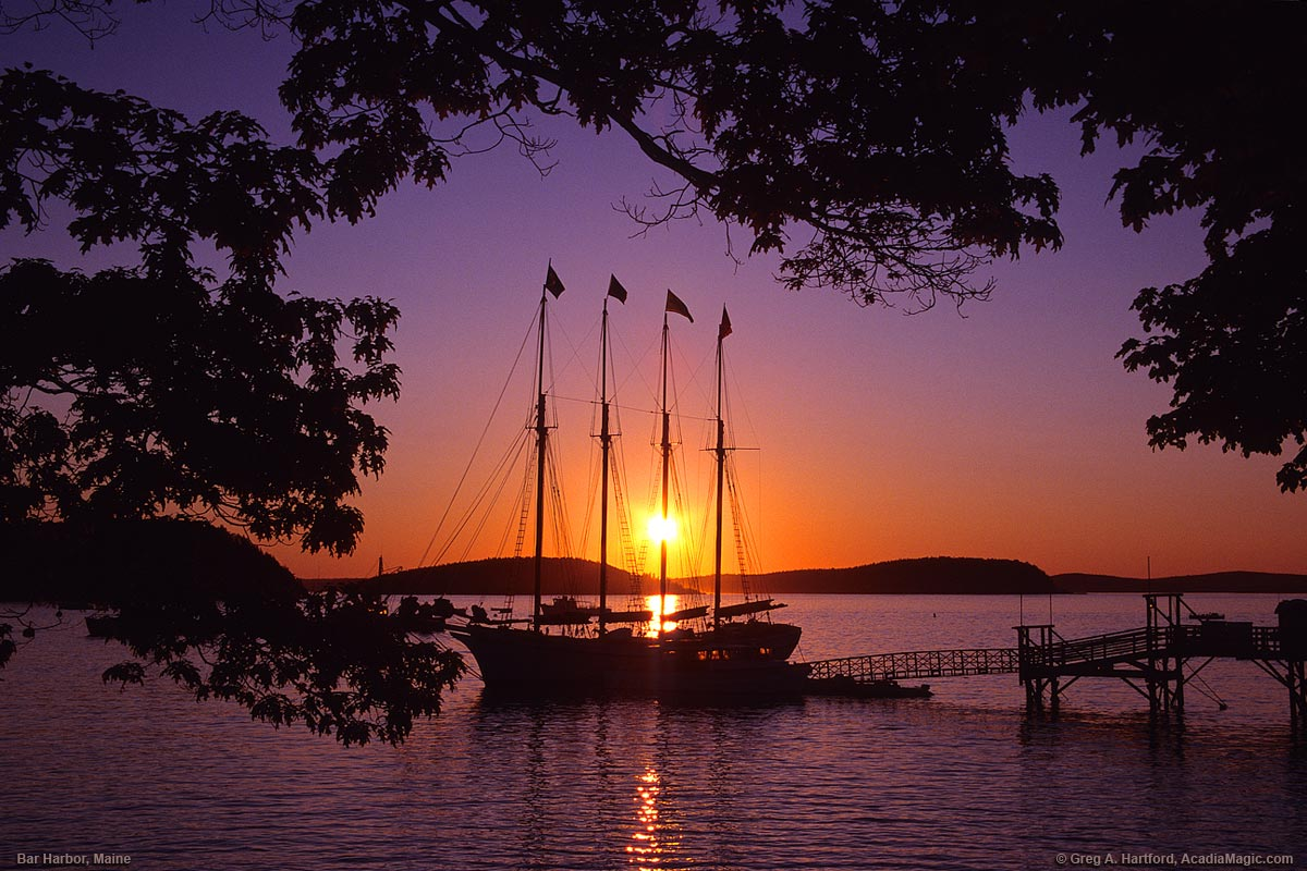 Bar Harbor Maine Visitor S Guide