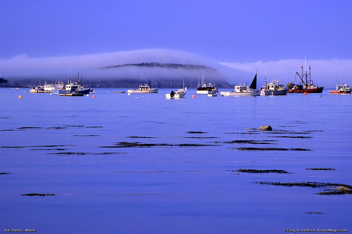 Late Afternoon Fog Over Bar Island