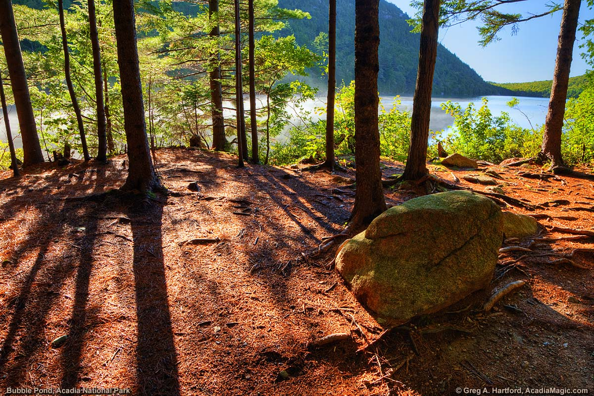 This is the view from a hiking path next to Bubble Pond in Acadia National Park.