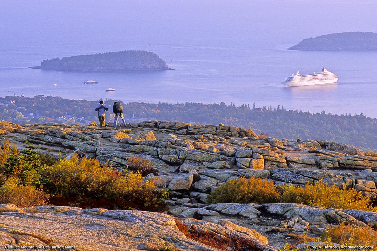 cadillac mountain view of cruise ship in bar harbor