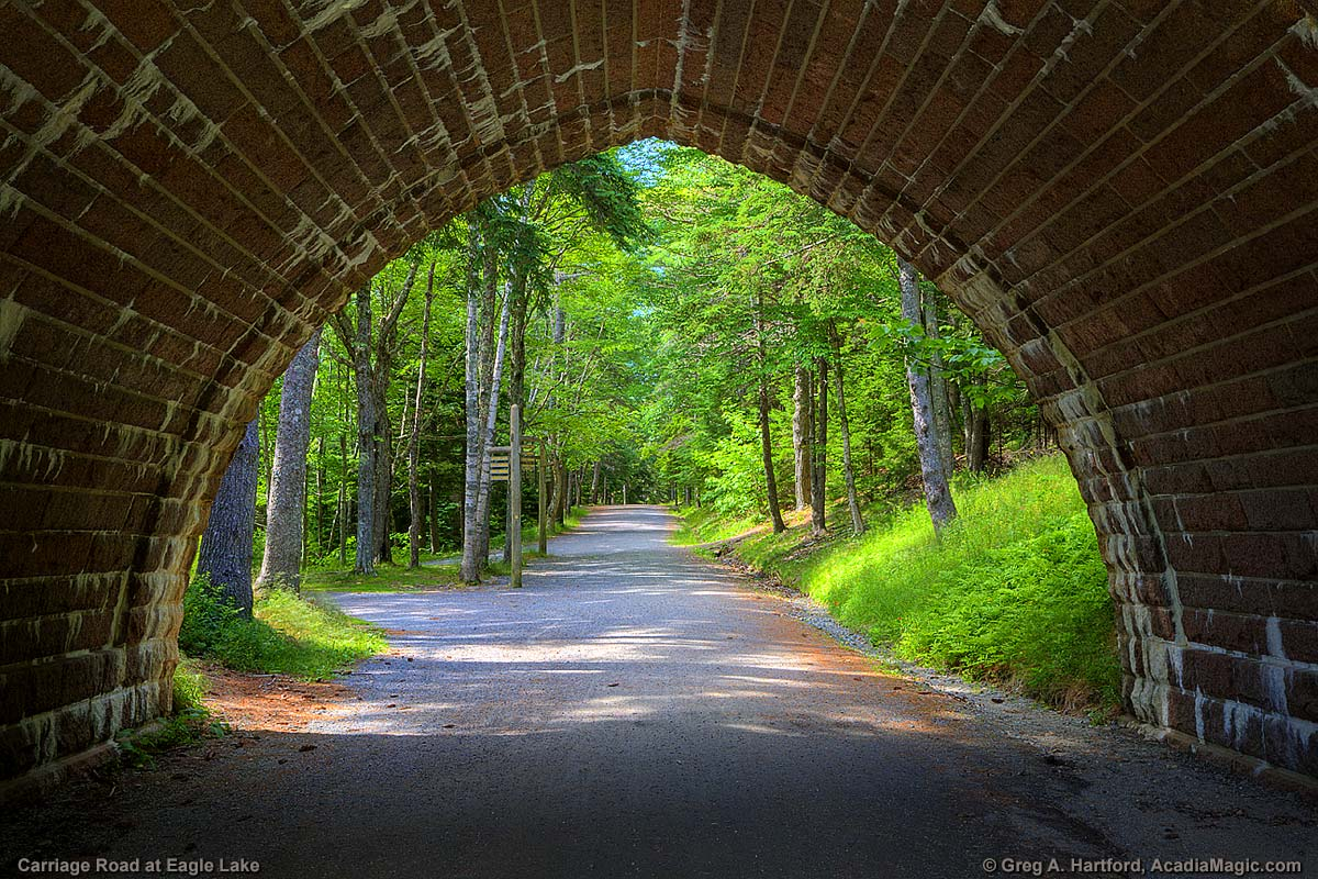 Carriage Road and Bridge in Acadia National Park