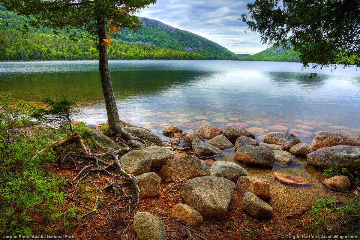 Rocky Shoreline of Jordan Pond