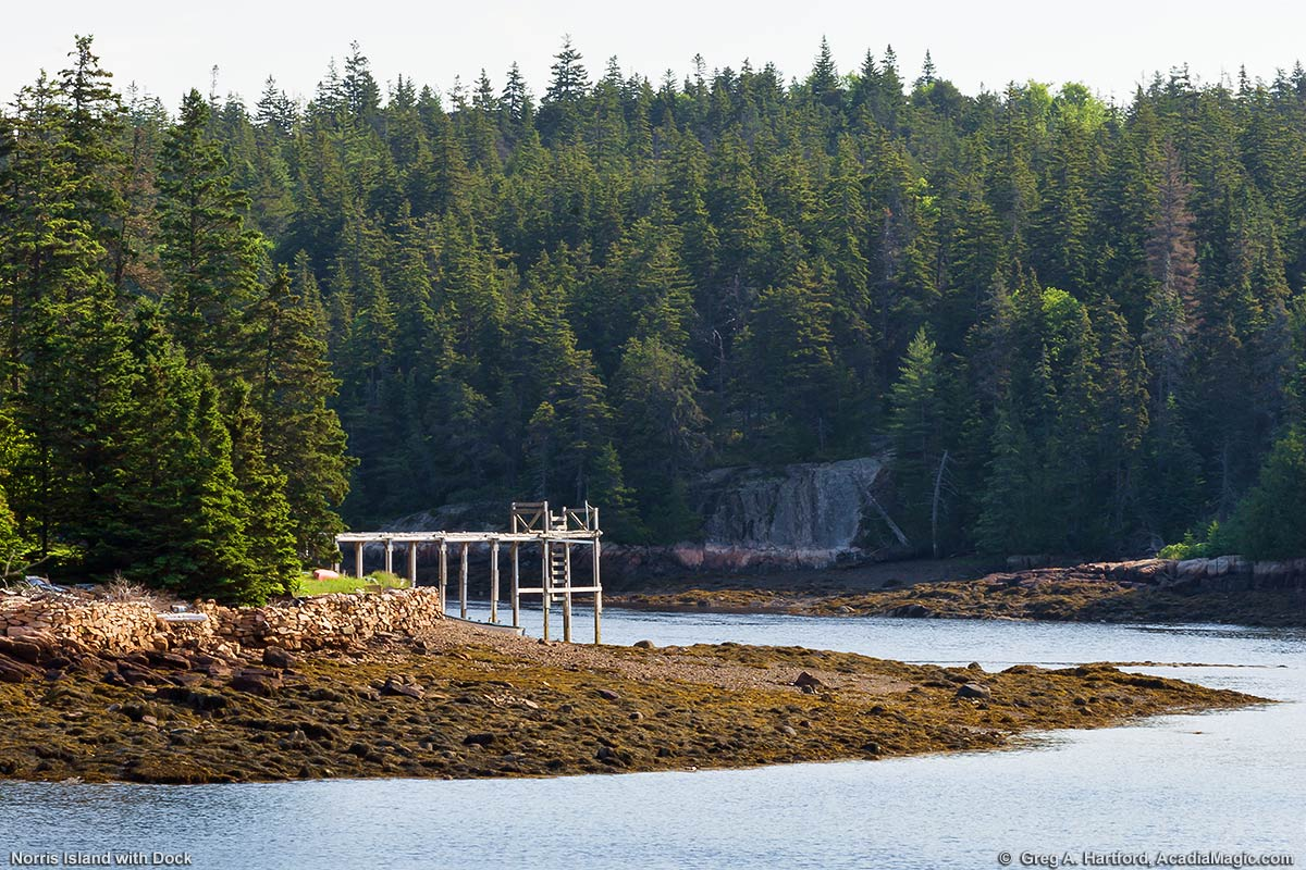 This shows Norris Island with a dock at low tide in Winter Harbor, Maine just north of Frazer Point.