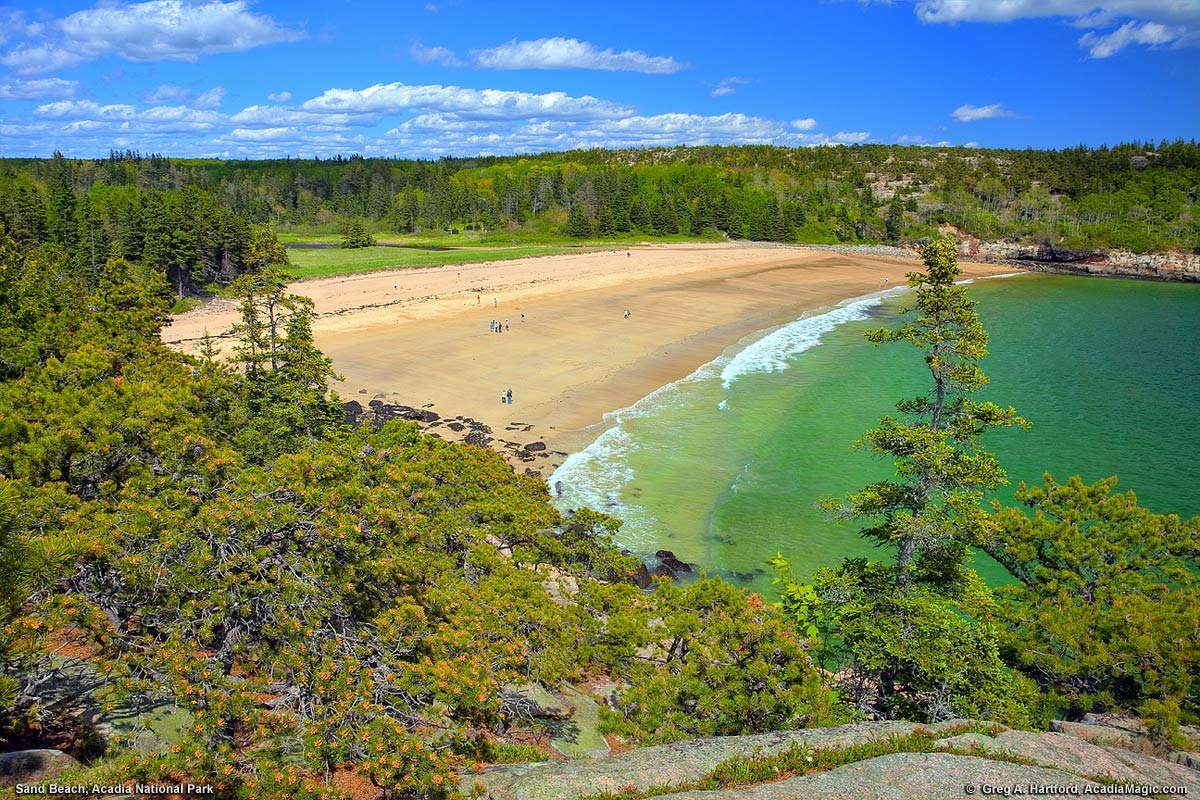 Sand beach acadia national park maine a view of sand beach from the ocean path sciox Choice Image