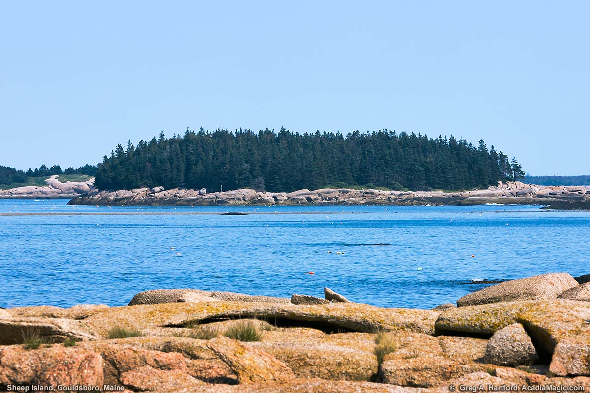 Privately owned Sheep Island in Gouldsboro, Maine