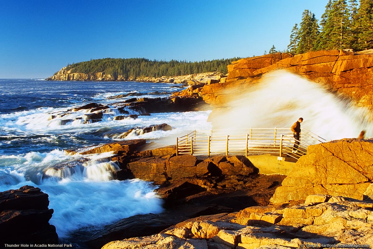Thunder hole acadia national park maine park visitor getting wet at thunder hole sciox Choice Image