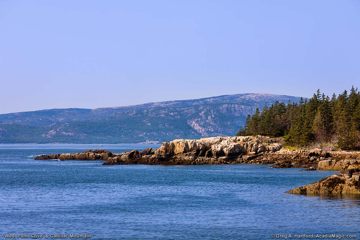 View of Cadillac Mountain from West Pond Cove at Schoodic Peninsula