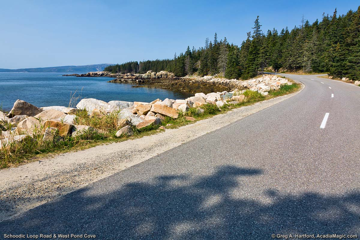 West Pond Cove next to Schoodic Loop Road