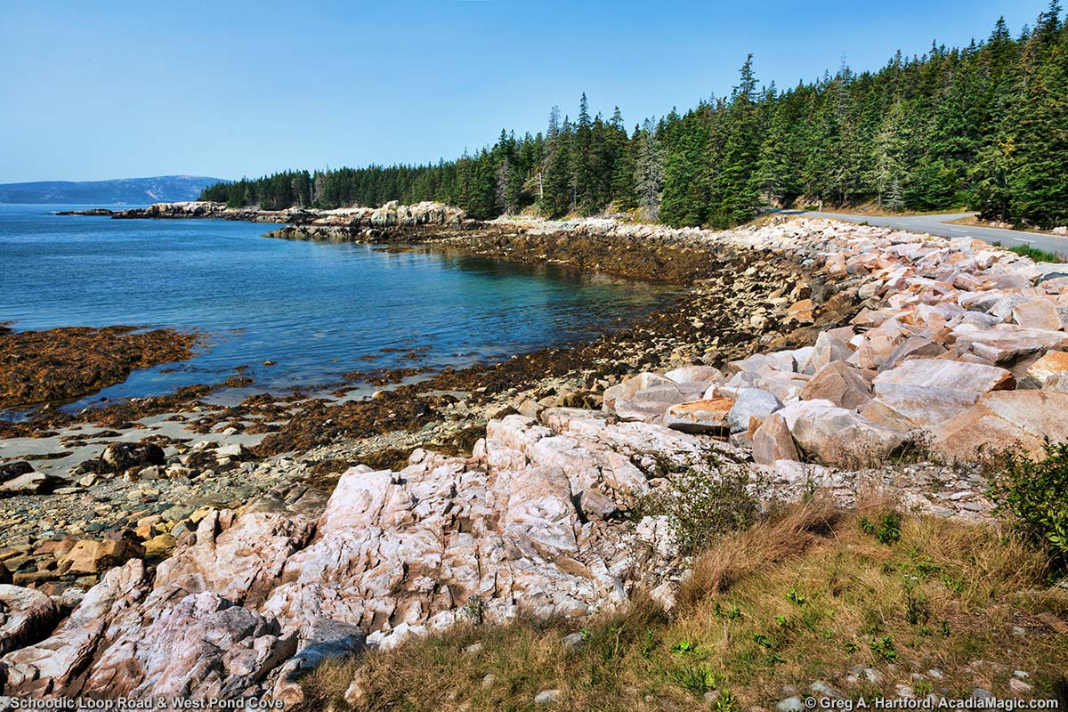 Rocky Shore at West Pond Cove next to Schoodic Loop Road