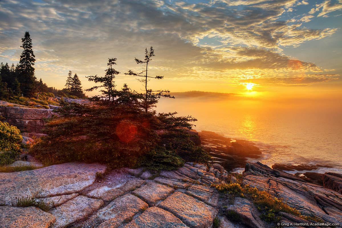 Golden Acadia Sunrise over the ocean near Sand Beach