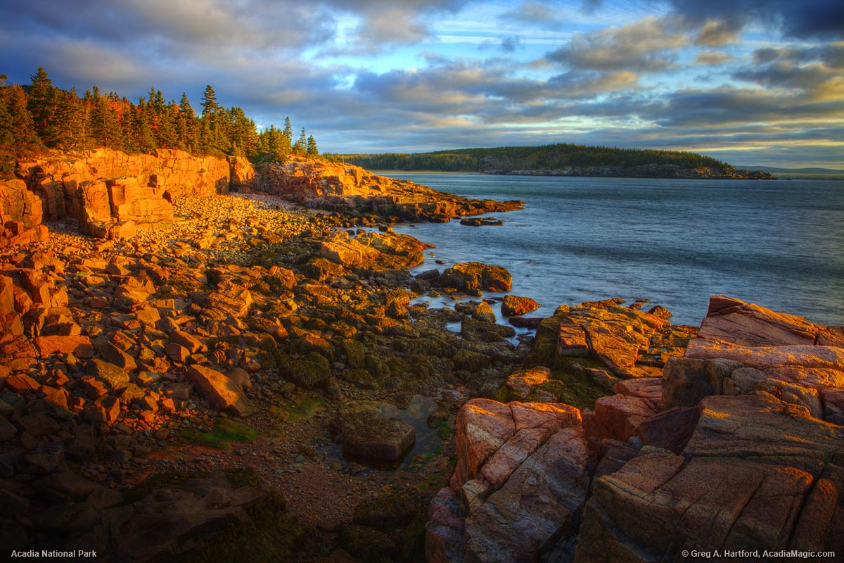 Sunrise sets the granite in Acadia National Park aglow.