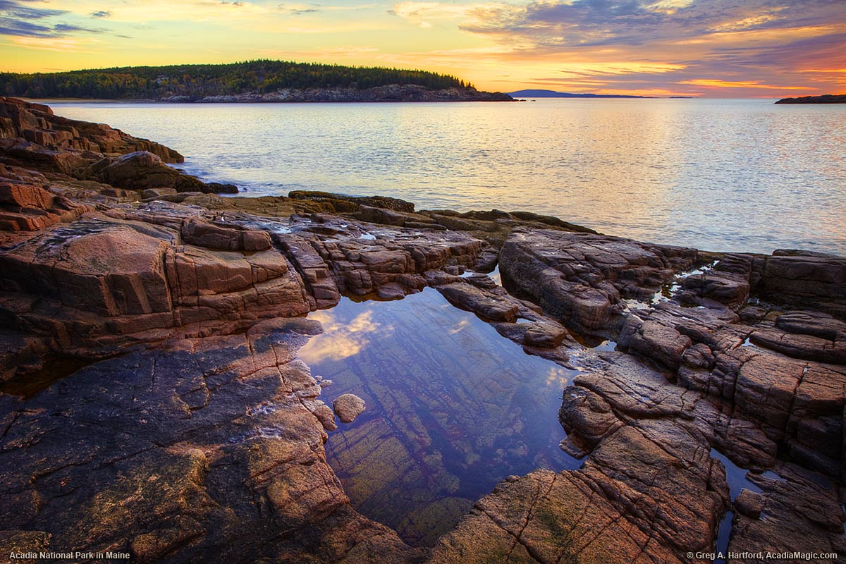 Tidal Pool in Acadia National Park, Maine