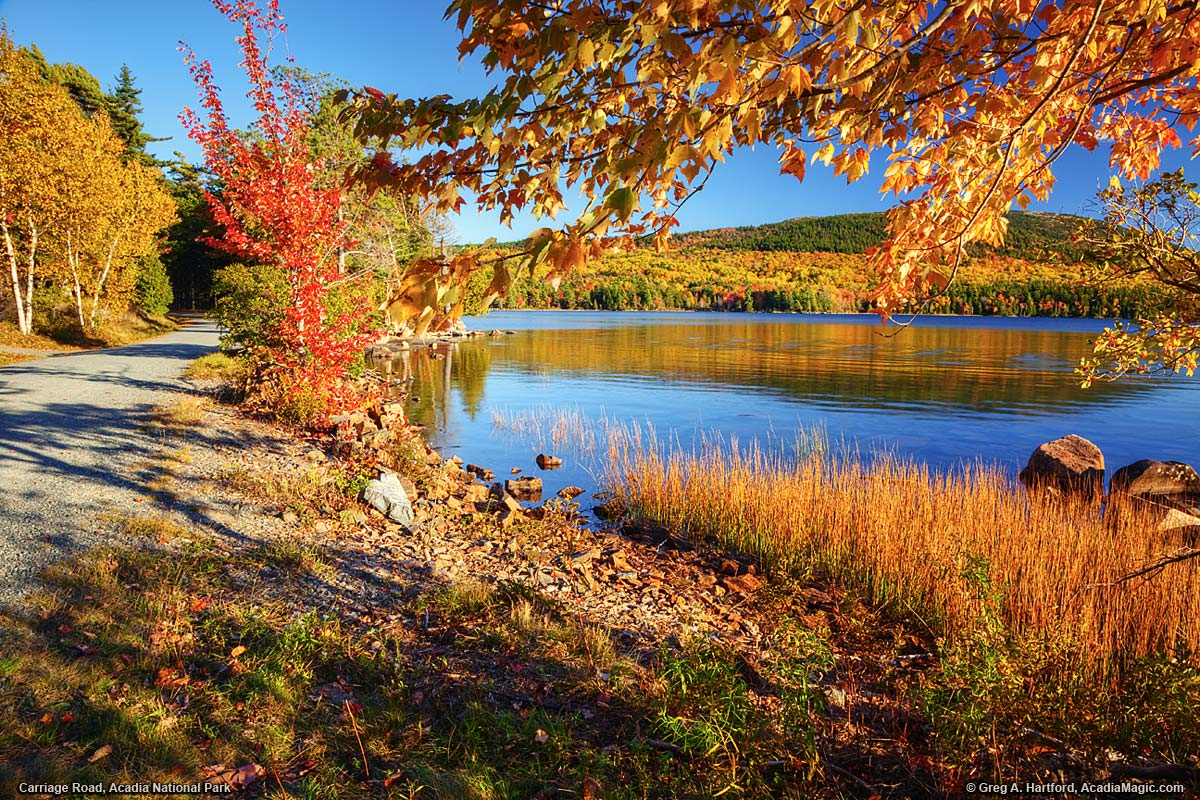 Autumn at Eagle Lake in Acadia National Park