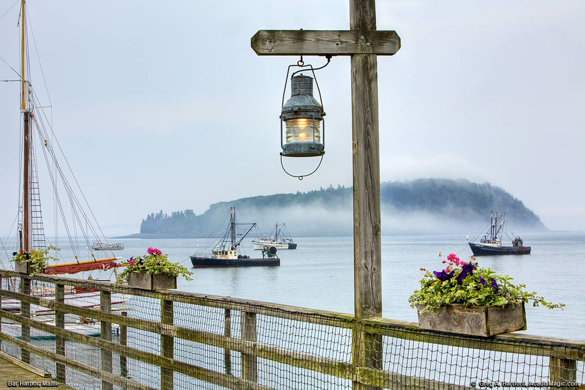 A Bar Harbor dock with flowers and fishing boats in the distance