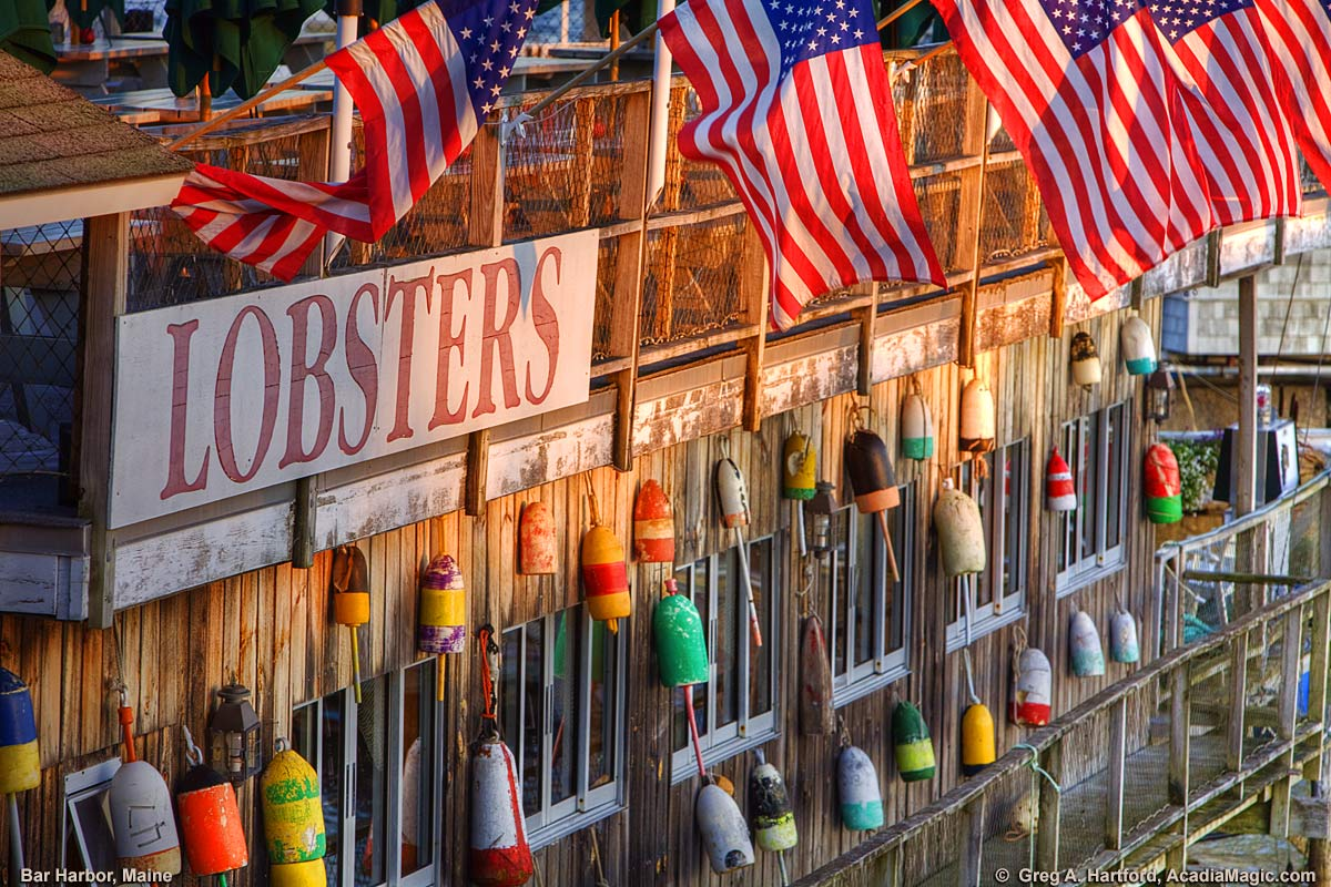 American Flags with Maine lobster buoys and lobster sign