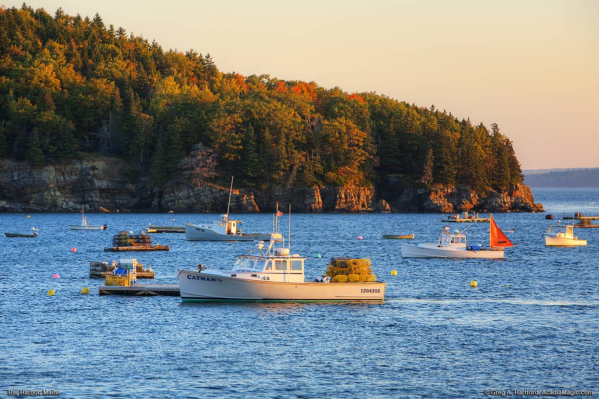 Bar Harbor Maine Lobster Boats In Autumn