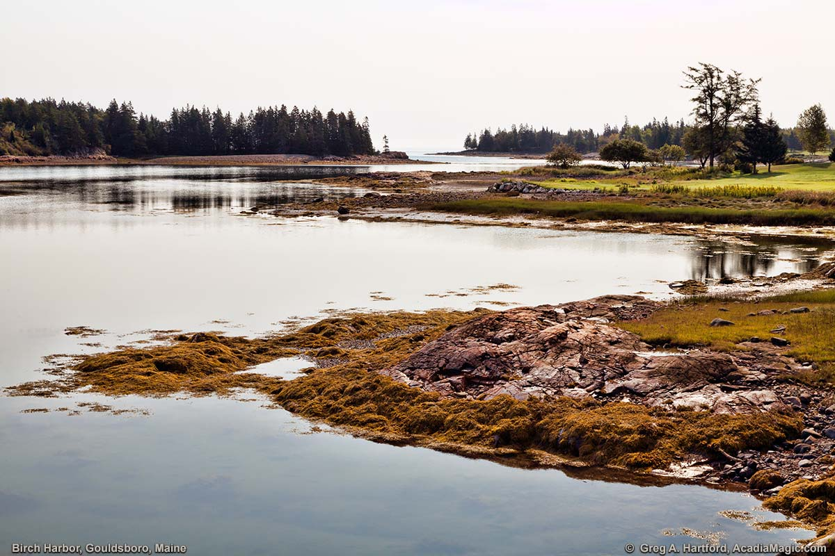 This shows Birch Harbor, Maine looking southwest across the inlet near Schoodic Peninsula.