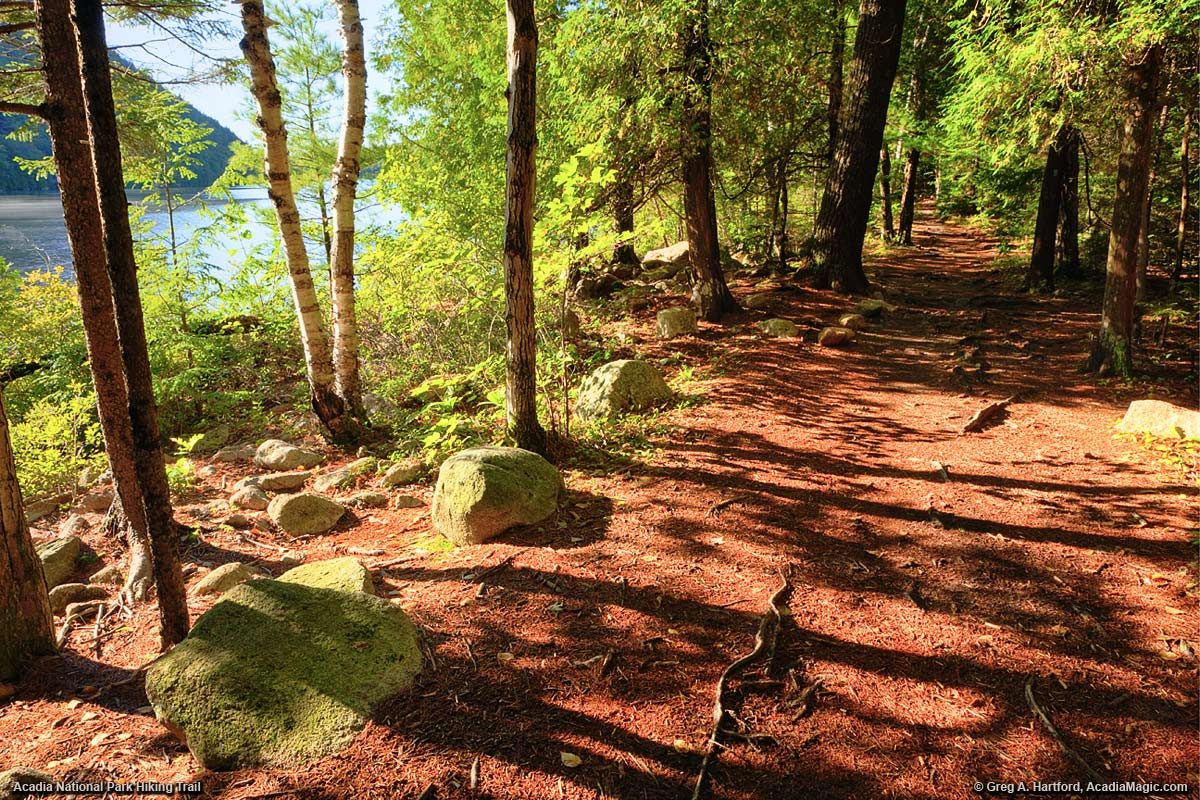 The Shore Side Hiking Trail at Bubble Pond in Acadia National Park