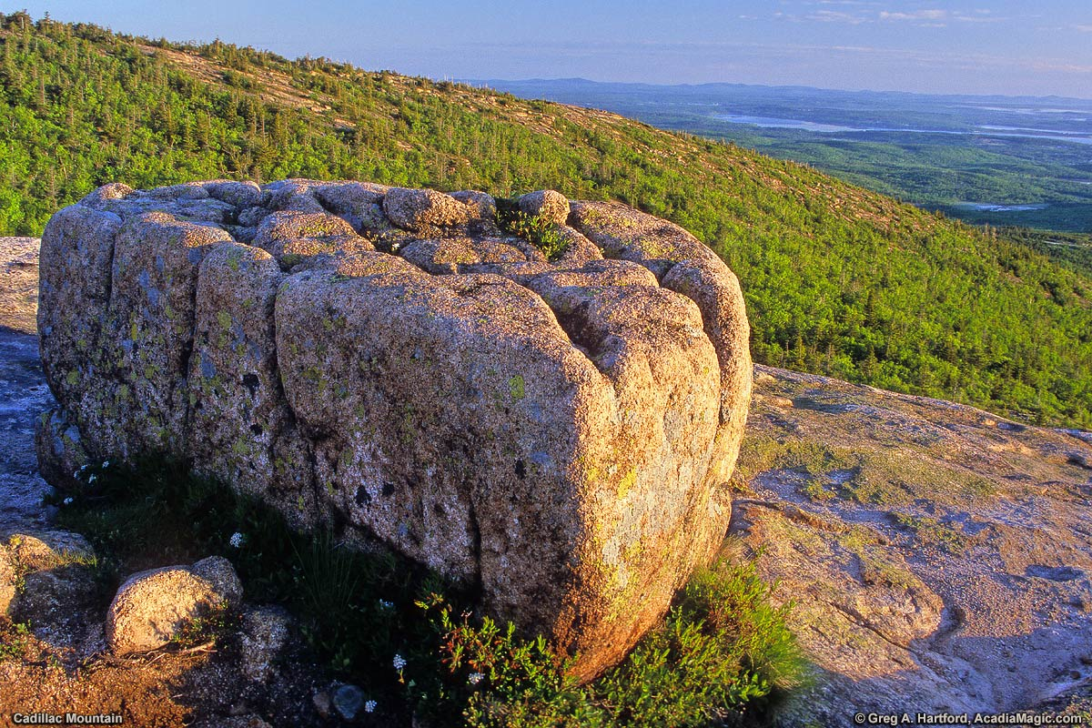 A large glacier boulder sits near the summit of Cadillac Mountain in Acadia