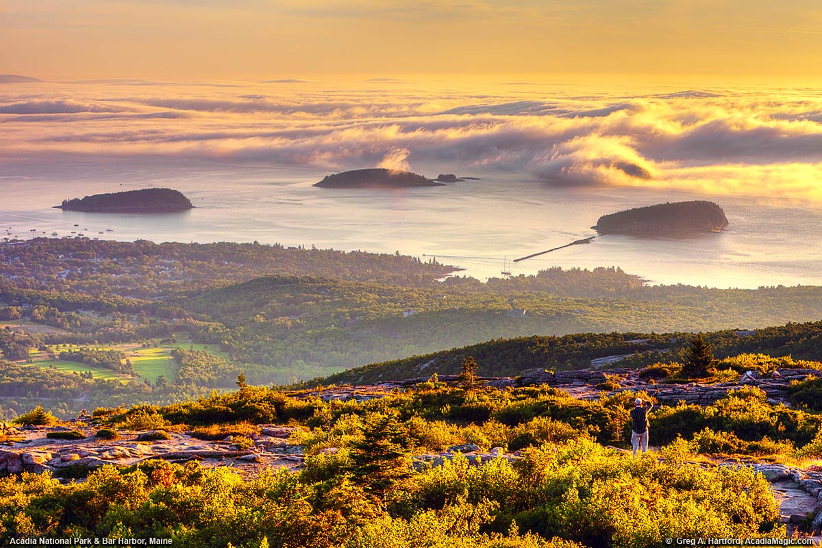 Golden Sunrise with Fog on Cadillac Mountain
