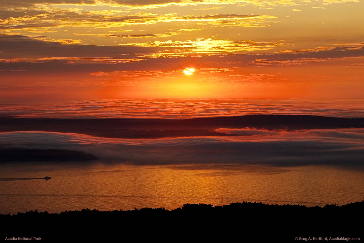 The fog is thick like a carpet over the Schoodic Peninsula as seen from Cadillac Mountain.