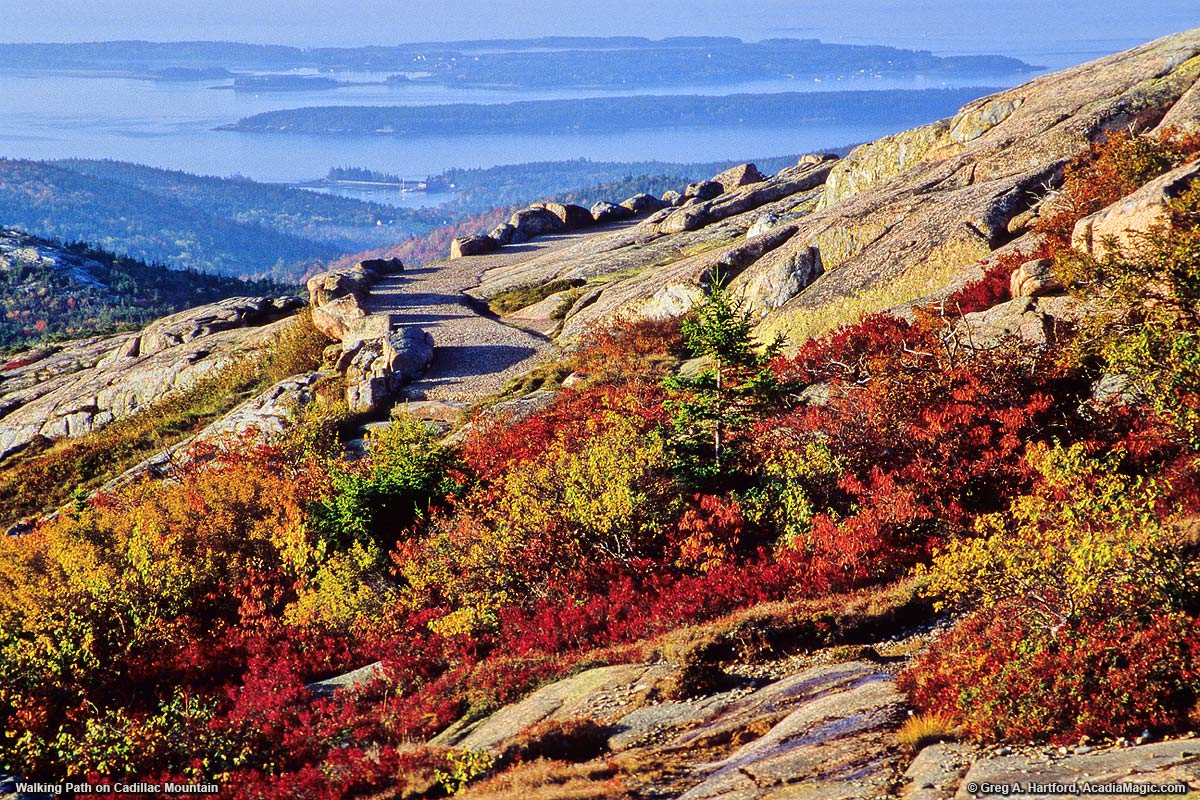 A view of Summit Path during autumn from Cadillac Mountain - Acadia National Park