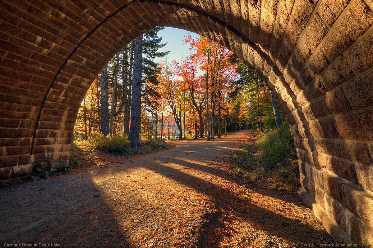 Carriage Road & Bridge During Autmn Season in Acadia
