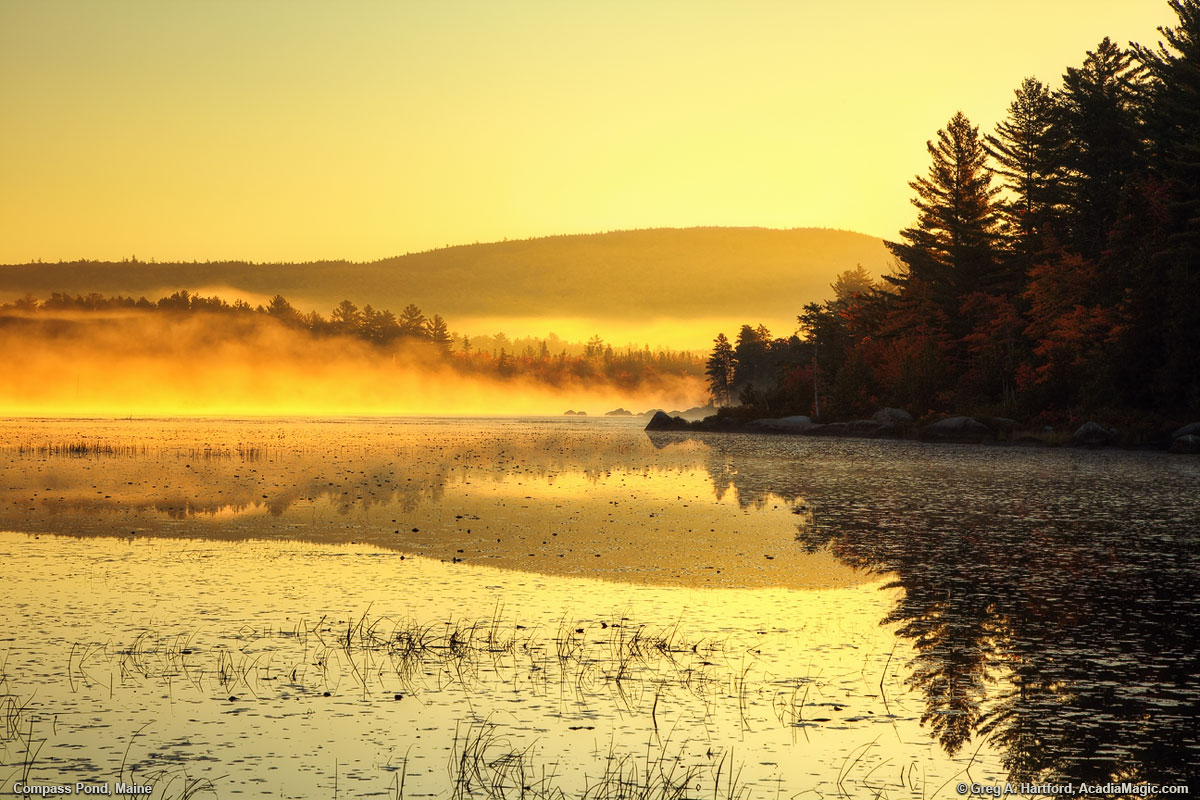 Golden Sunrise at Compass Pond, Maine