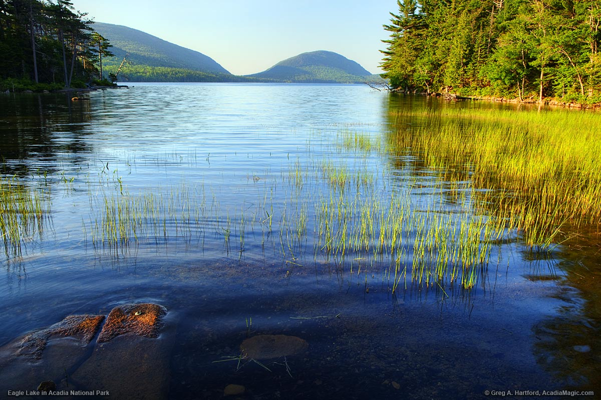 Eagle Lake in Acadia National Park