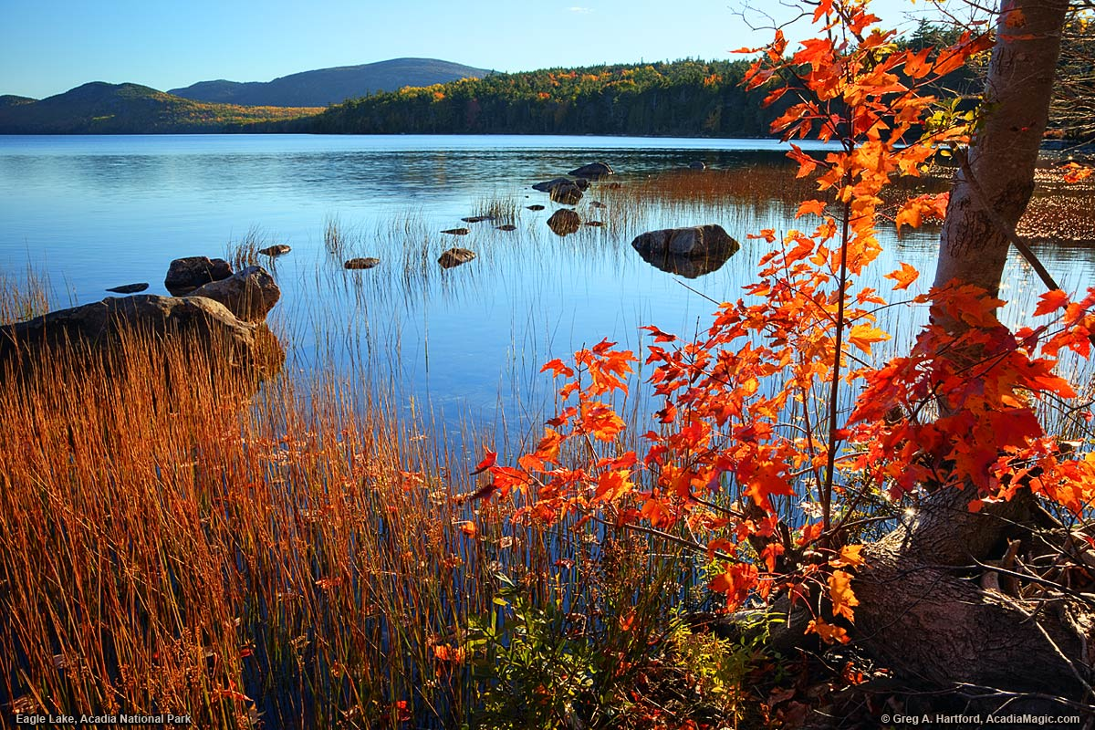 Eagle Lake during autumn in Acadia National Park