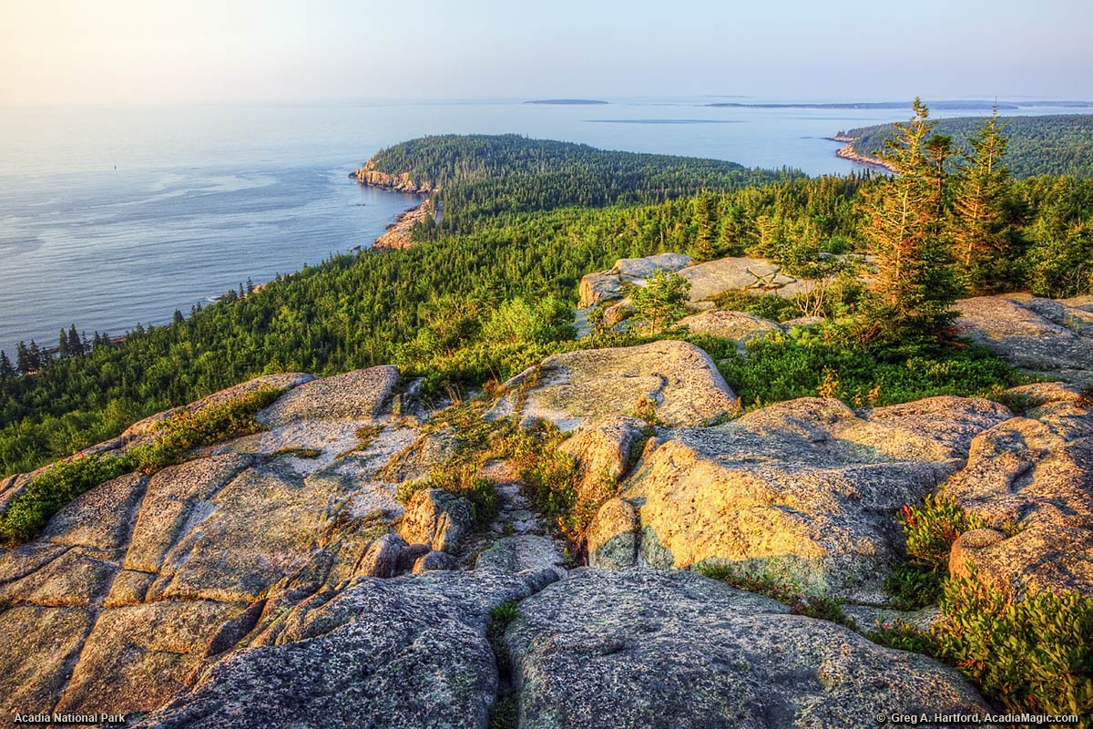 Otter Cliff can be seen in the distance from Gorham Mountain Trail in Acadia