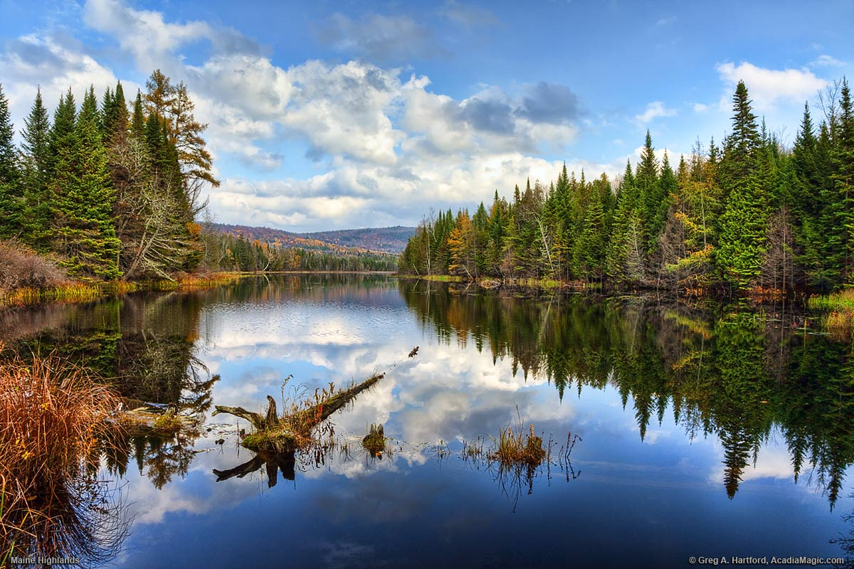 Howard Stream In Guilford Maine Autumn