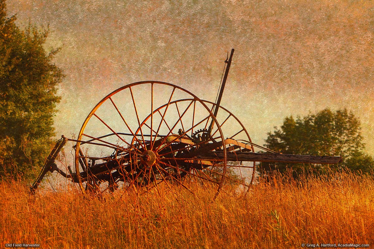 Old Hay Harvester