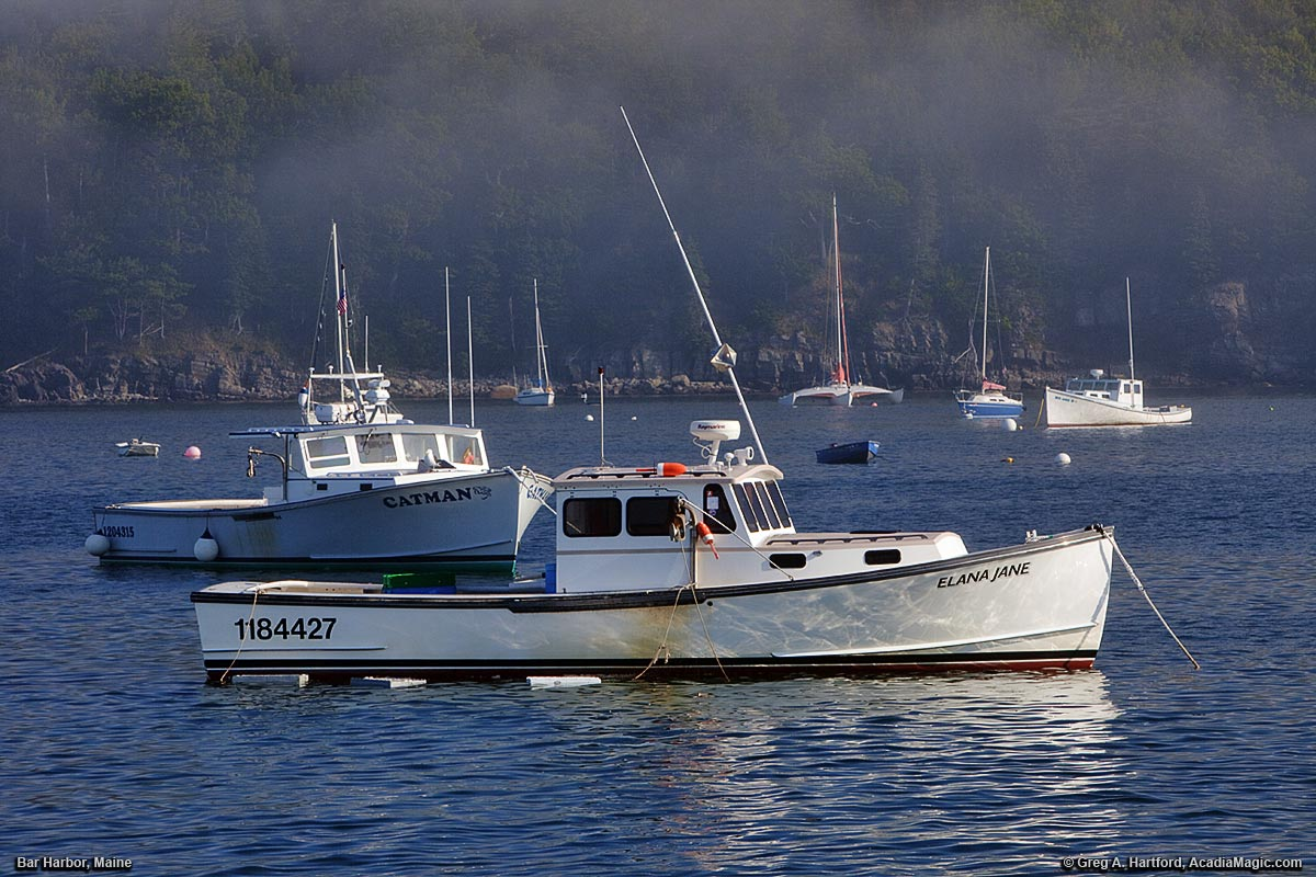 Bar harbor maine lobster boats at sunrise for Fishing boat rentals near me