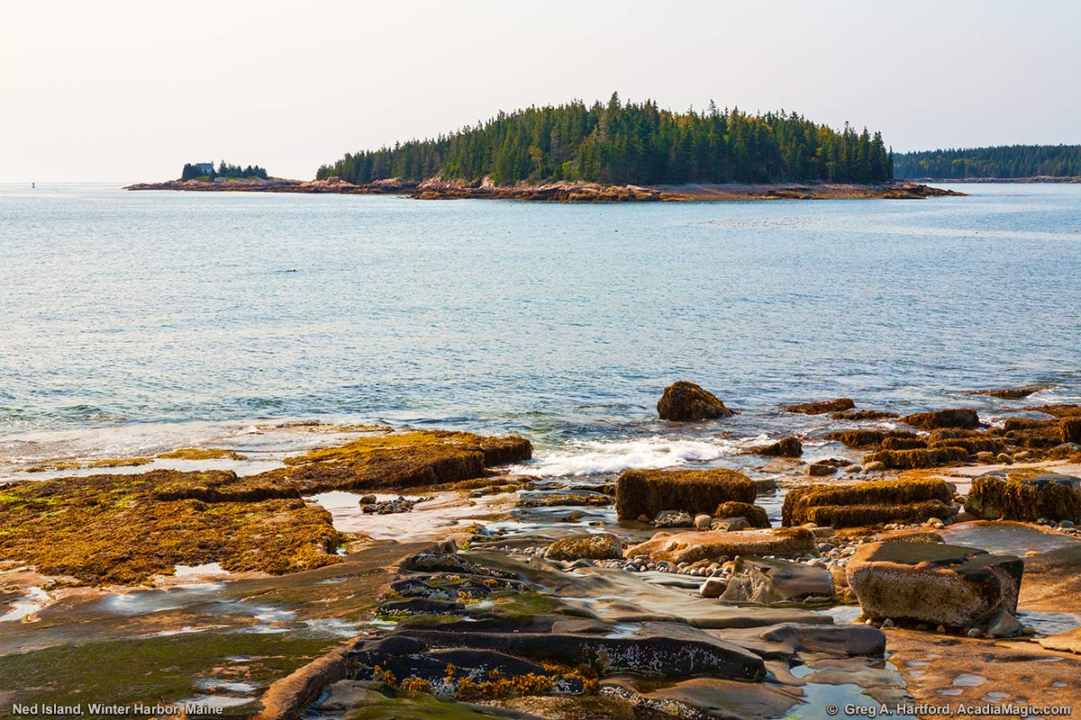Ned Island (in the center) and Mark Island Lighthouse (on the left) viewed from Grindstone Point in Winter Harbor