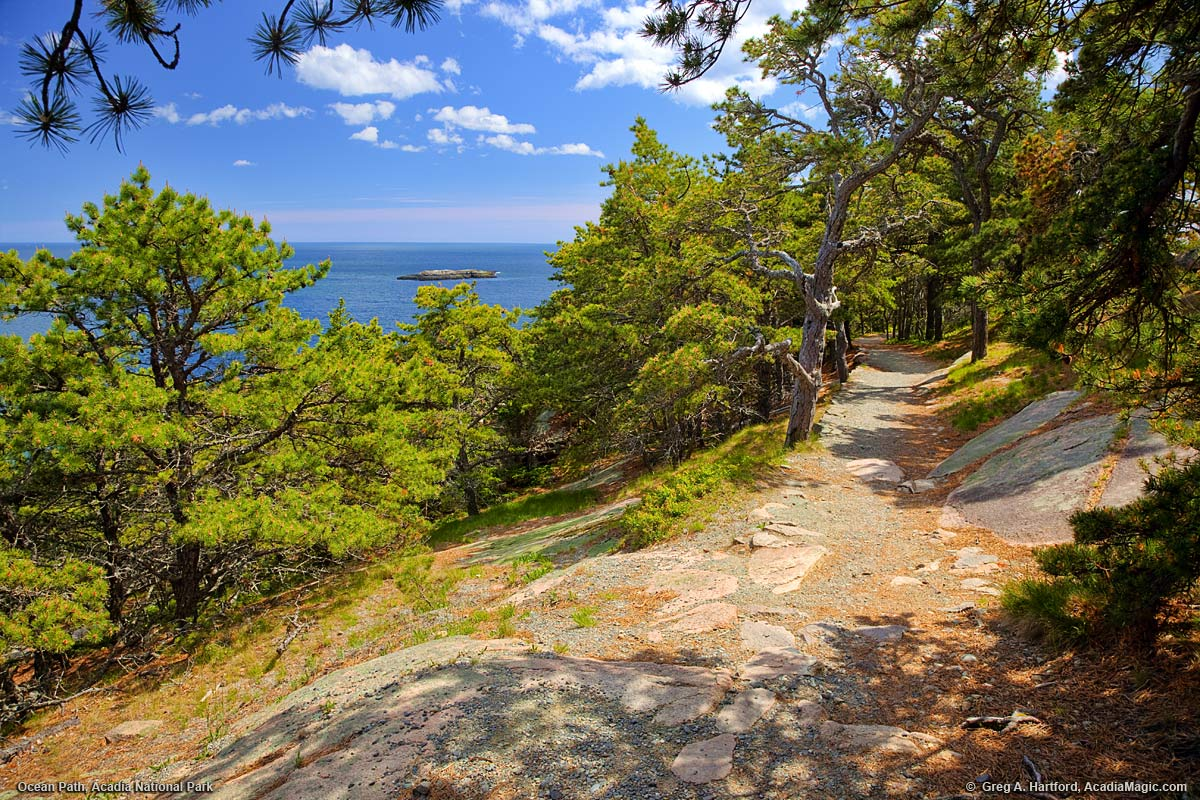An ocean path in Acadia National Park, Maine
