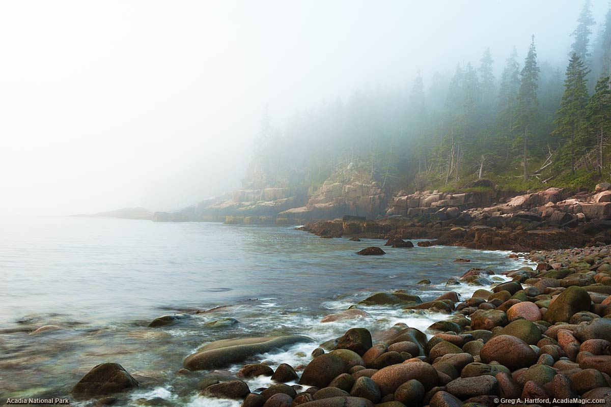 A view of Otter Cliff on very foggy morning