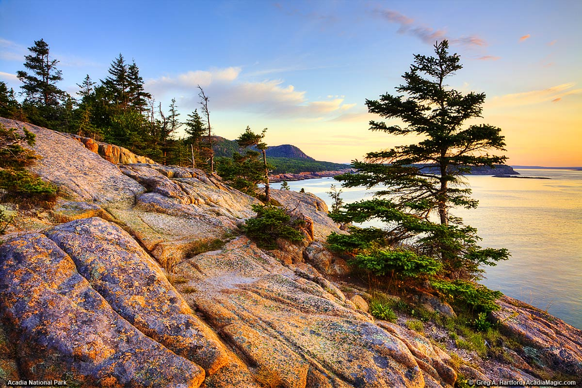A close up view of Otter Cliff in Acadia National Park