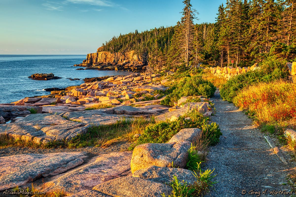 A view of Otter Cliff from the Shore Path in Acadia National Park
