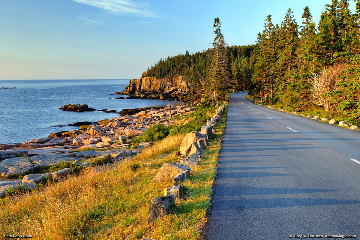 Park Loop Road in Acadia National Park