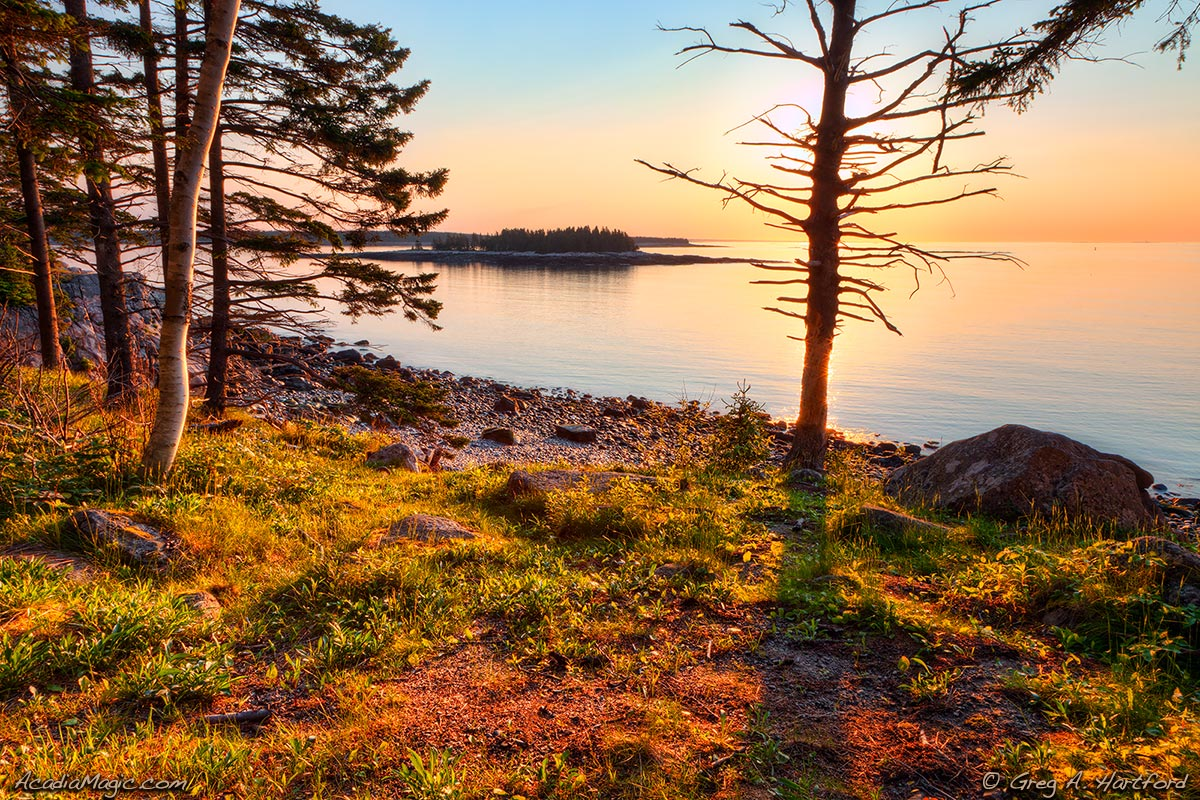 Sunrise in Acadia National Park at Schoodic Peninsula